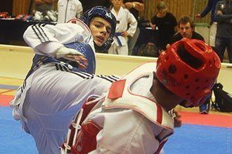 Erik Farmakas. Krona Cup 2017 i taekwondo.